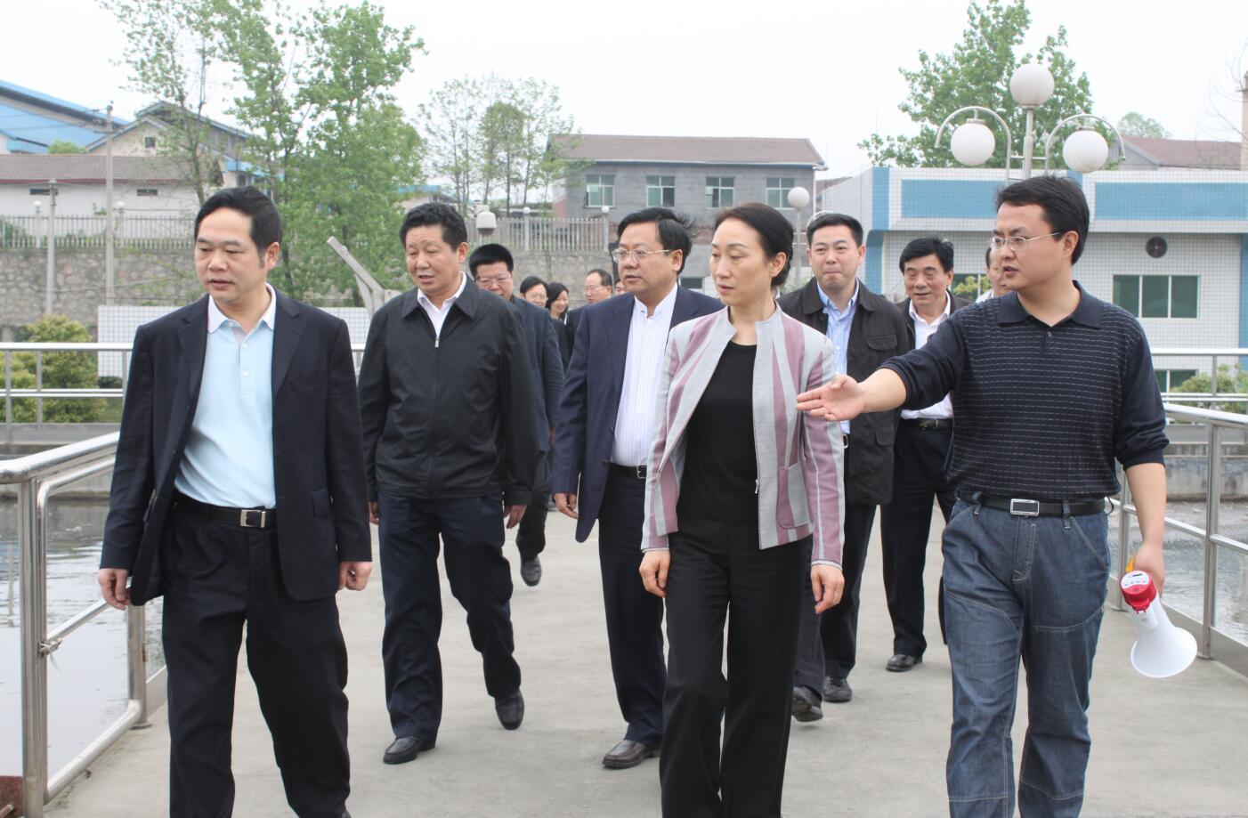 2011年4月,省政協主席,時任省委常委、統戰部部長李薇薇來公司視察.JPG